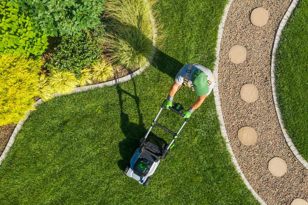 Landscaping Tips for Any Location